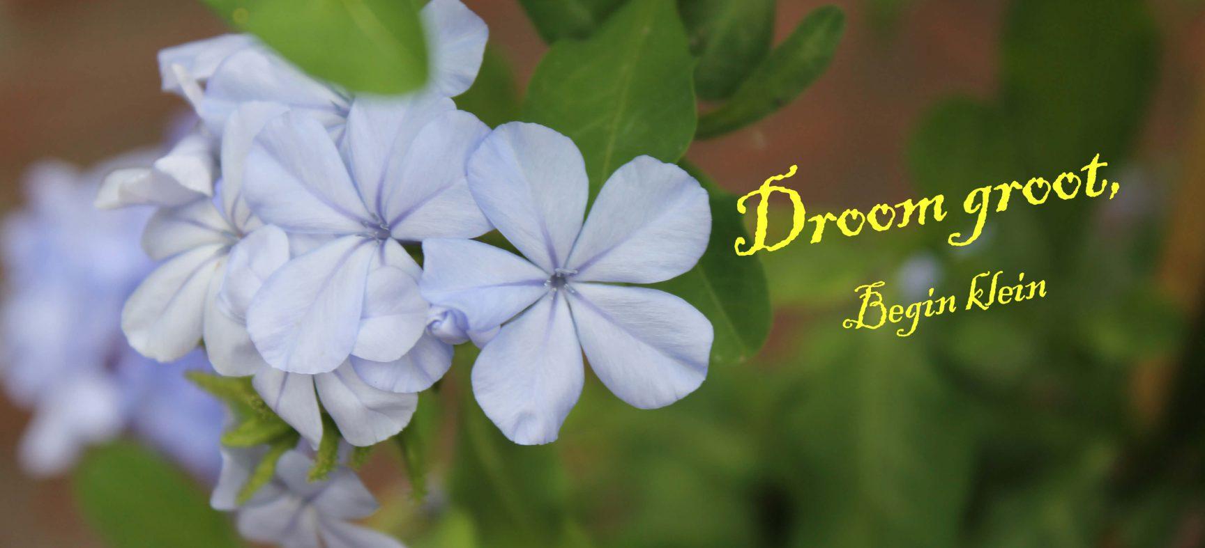 Haal positieve kracht uit Blue Monday